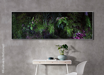 LUMAS Nature Wall Art brings life to your space