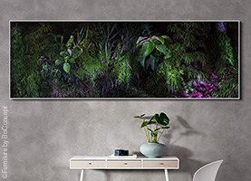 Nature pictures bring life to your space