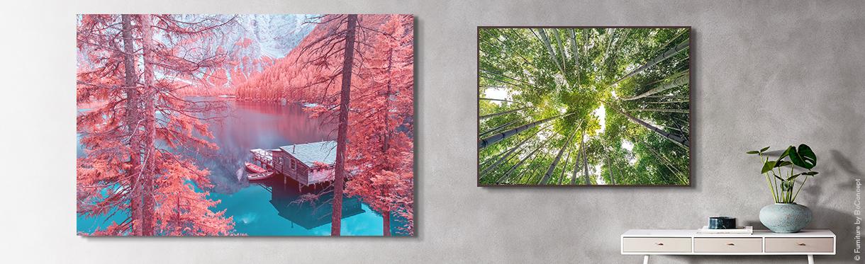 LUMAS Nature Prints: Zero