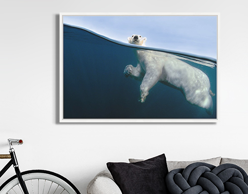 ocean photograph of a polar bear excercising by Joe Bunni