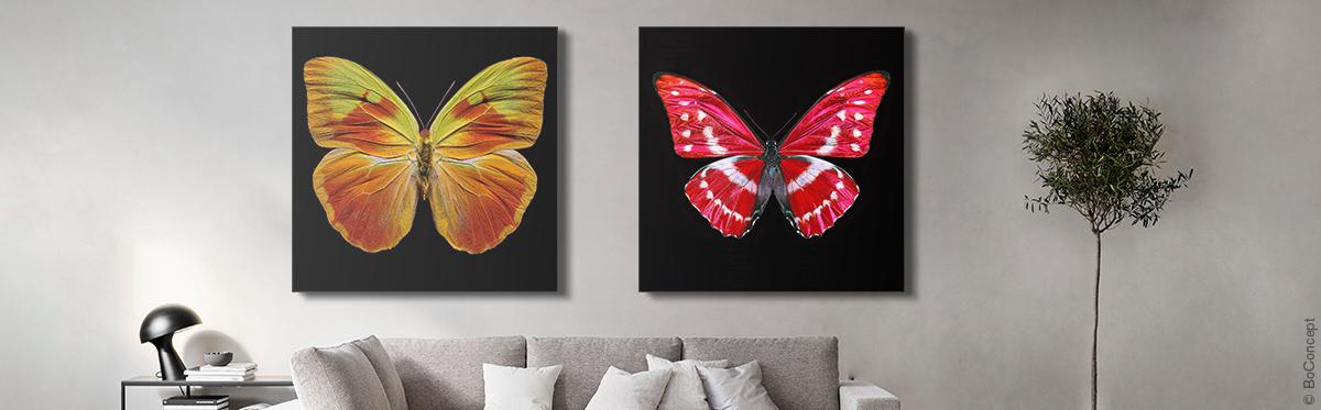 Butterfly XI (g) et Butterfly X (d) de Heiko Hellwig