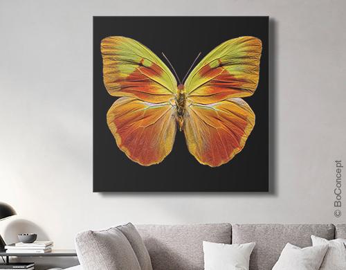 Butterfly XI von Heiko Hellwig