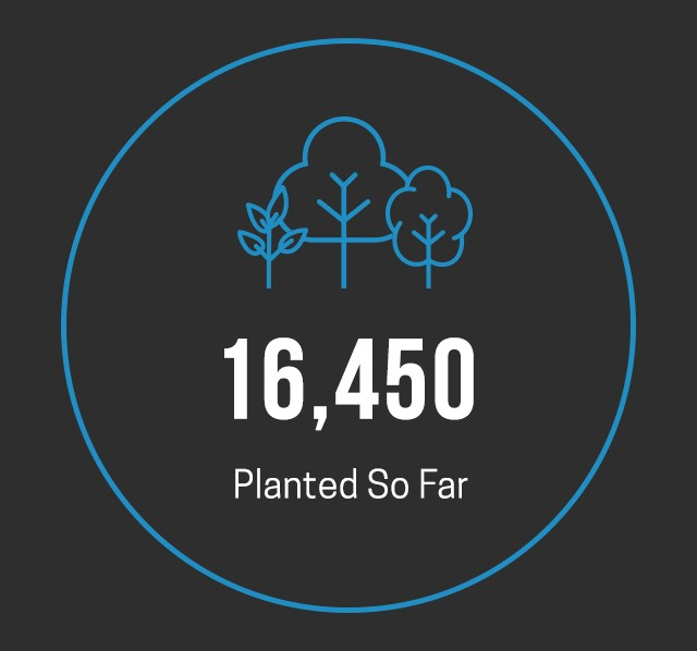 Over 16,450 trees planted already
