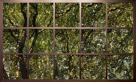 Christiane Zschommler: Treescape I
