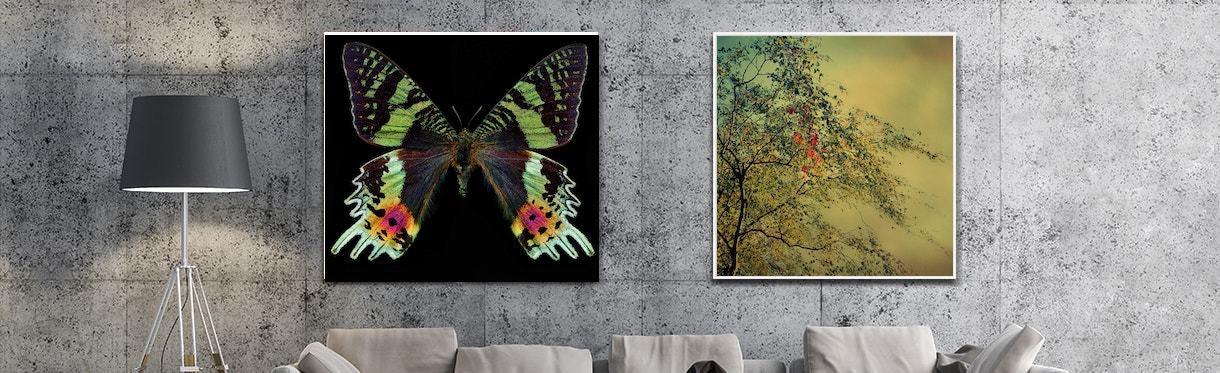 Artworks by Christiane Steinicke and Heigo Hellwig