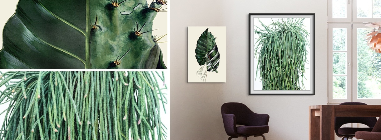 Artworks by Rive Roshan and Kwangho Lee on a home wall