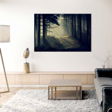Living Room Wall Art: David Baker: New Forest Dawn