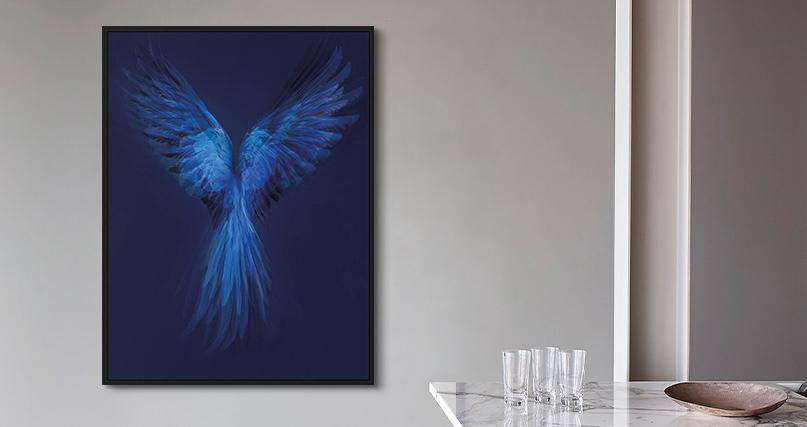 Juan Fortes: Hyacinth Macaw