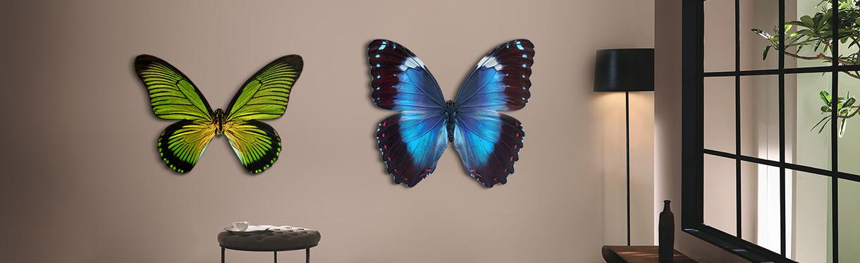 Butterfly XIII, Butterfly XIV by Heiko Hellwig