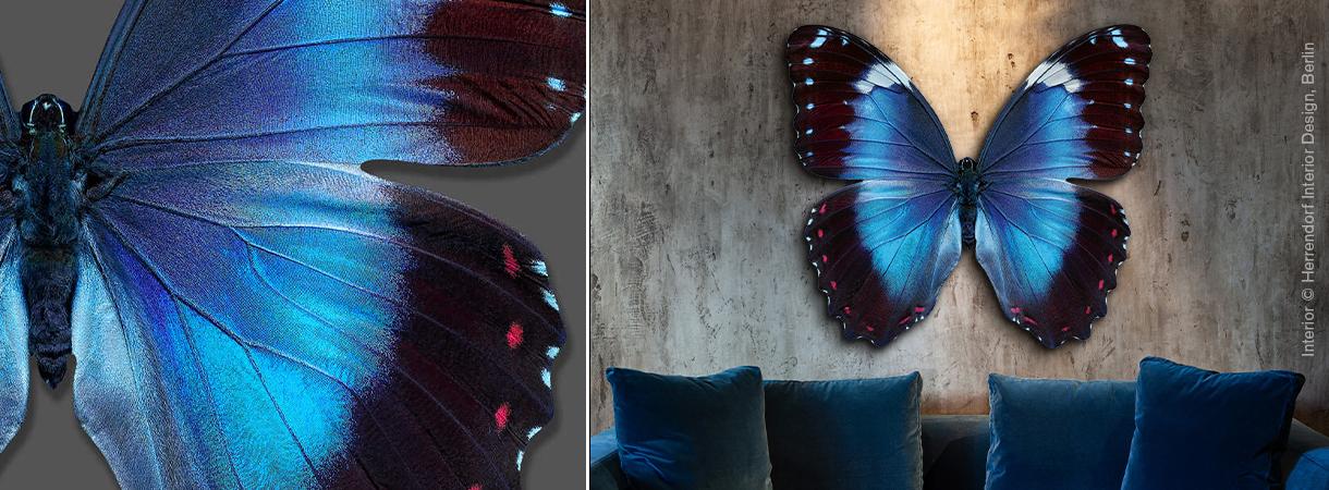 Heiko Hellwig: Butterfly III
