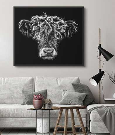 Animal portraits the latest collection